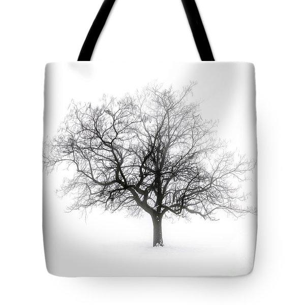 Winter Tree In Fog Tote Bag
