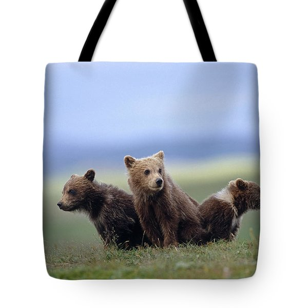 4 Young Brown Bear Cubs Huddled Tote Bag by Eberhard Brunner