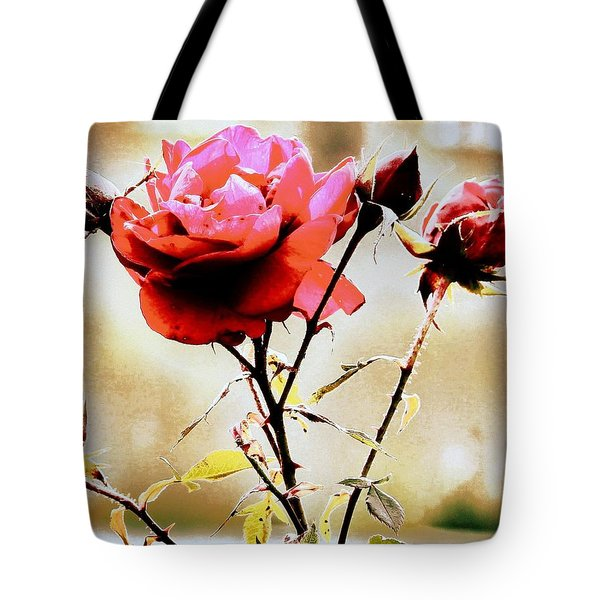 Tote Bag featuring the photograph 40 Something by Faith Williams