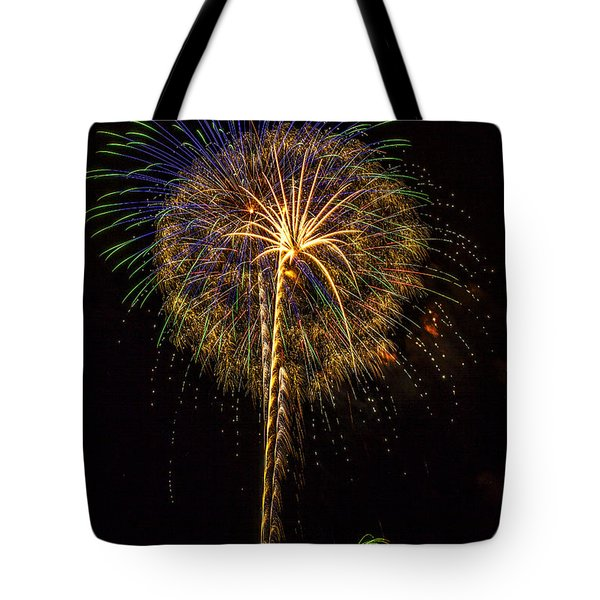 4th July #13 Tote Bag by Diana Powell