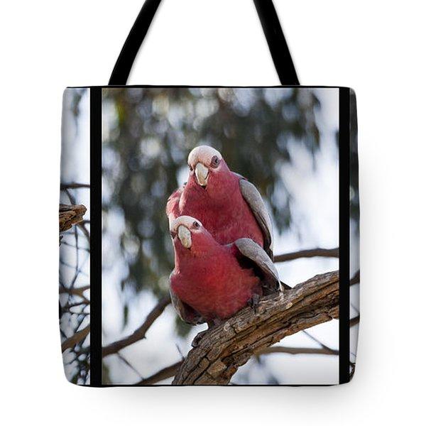 Galahs Tote Bag