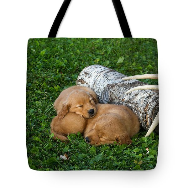Golden Retriever Puppies Tote Bag by Linda Freshwaters Arndt