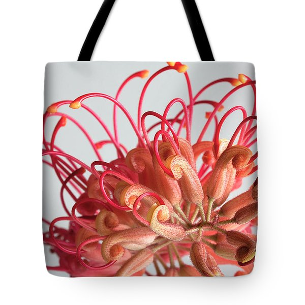 Grevillea Flower Tote Bag by Shirley Mitchell