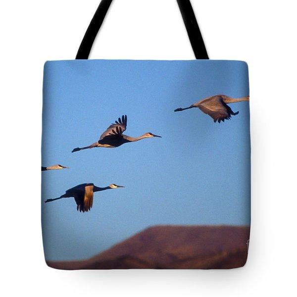 Sandhill Cranes Tote Bag by Steven Ralser