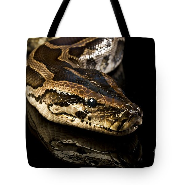 Tote Bag featuring the photograph Snake by Gunnar Orn Arnason