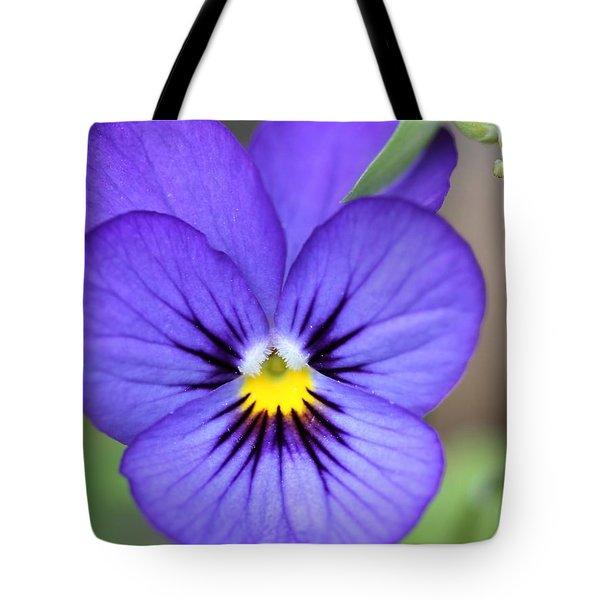 Viola Named Sorbet Blue Heaven Jump-up Tote Bag by J McCombie