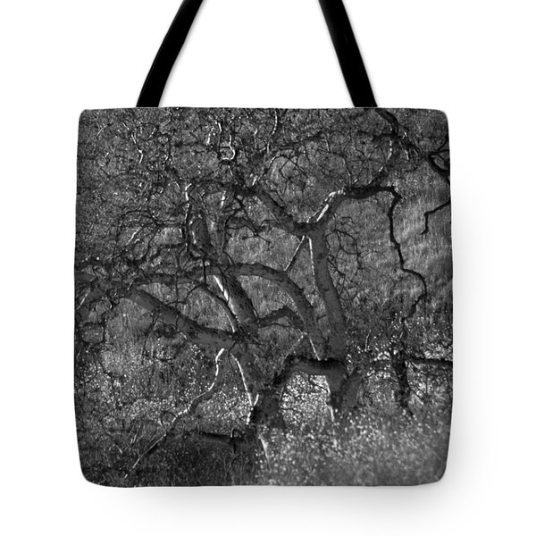 50 Shades Of Gray Trees Tote Bag