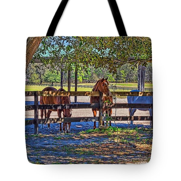 Tote Bag featuring the photograph 5938_212 by Lewis Mann