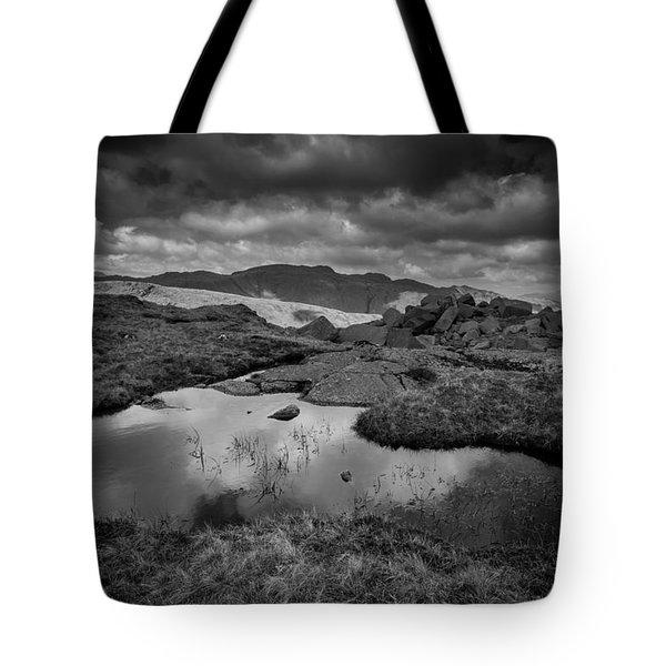 Langdale Tote Bag