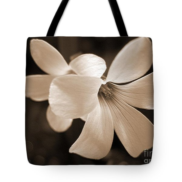 Oxalis Triangularis Or Burgundy Shamrock Tote Bag