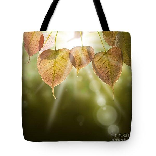 Pho Or Bodhi Tote Bag