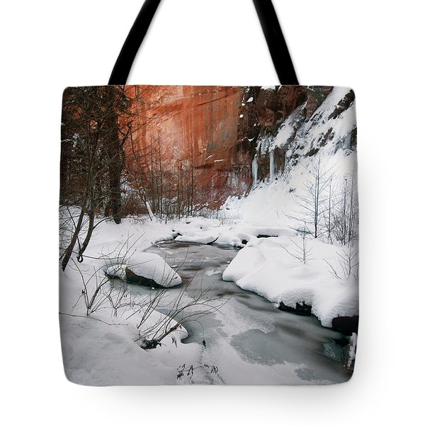 16x20 Canvas - West Fork Snow Tote Bag