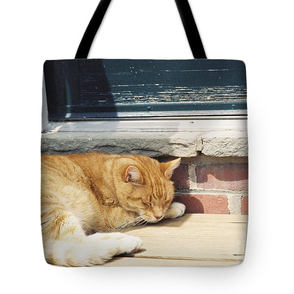 #665 03 Catnap  Tote Bag by Robin Lee Mccarthy Photography