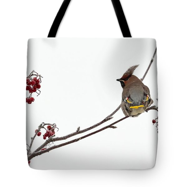 Bohemian Waxwings Eating Rowan Berries Tote Bag by Jouko Lehto