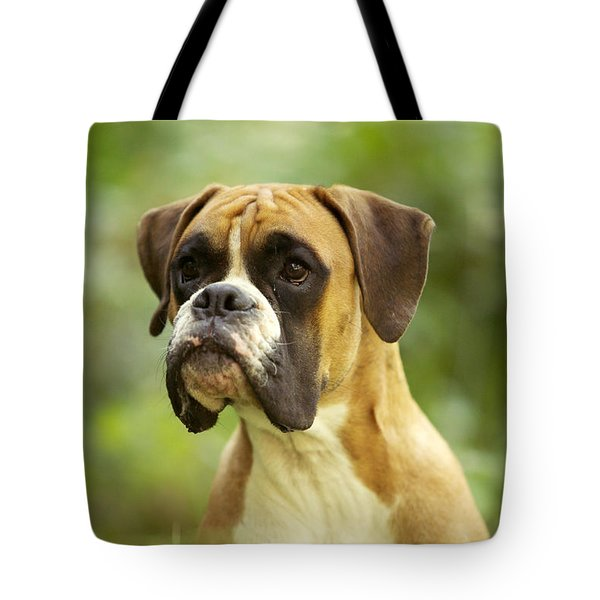 Boxer Dog Tote Bag by Jean-Michel Labat