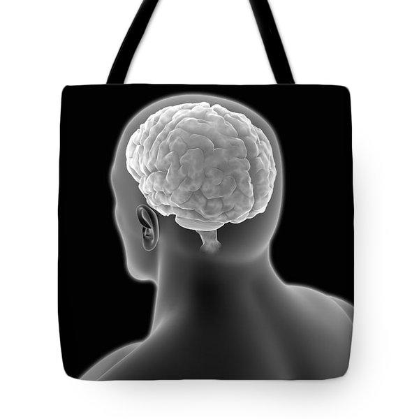 Conceptual Image Of Human Brain Tote Bag by Stocktrek Images