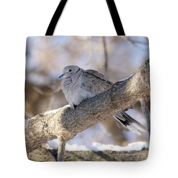 Euarsian Collard Dove Tote Bag by Lori Tordsen