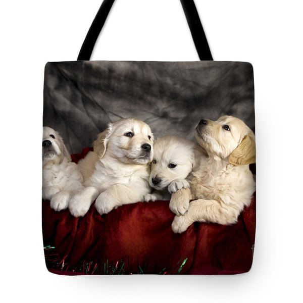 Festive Puppies Tote Bag by Angel  Tarantella