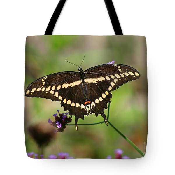 Giant Swallowtail Butterfly Tote Bag by Karen Adams