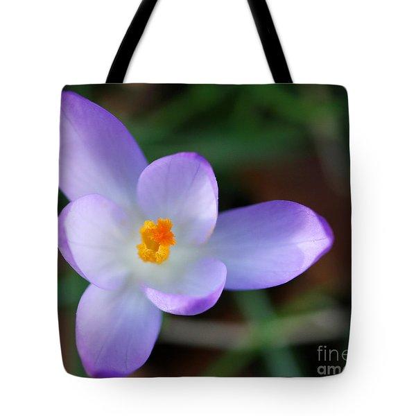 Vibrant Spring Crocus Tote Bag