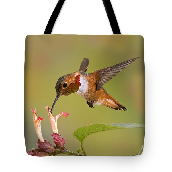 Allens Hummingbird Tote Bag