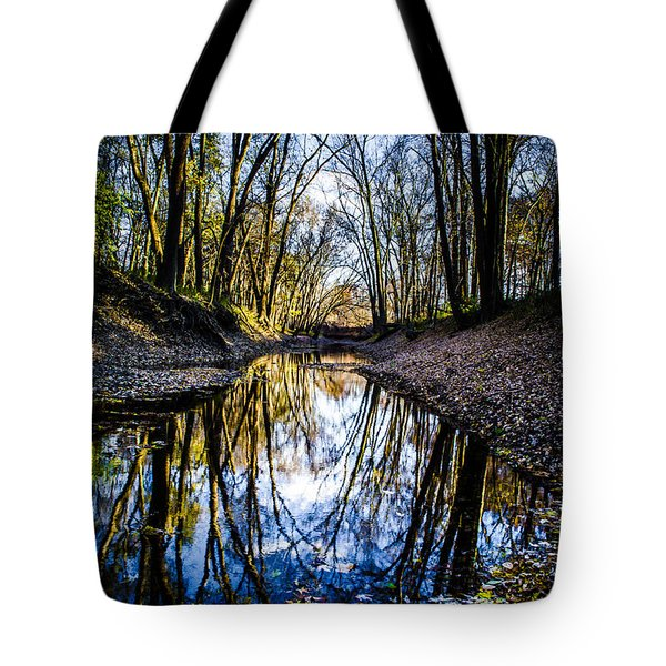 Treasure Of Leaves Tote Bag
