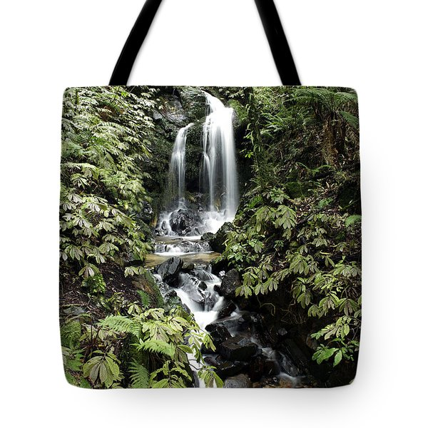 Waterfall Tote Bag by Les Cunliffe