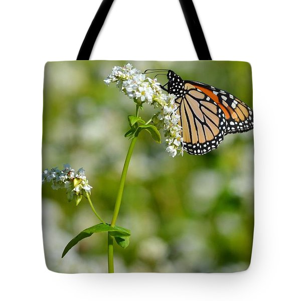 Butterfly Tote Bag by Dacia Doroff