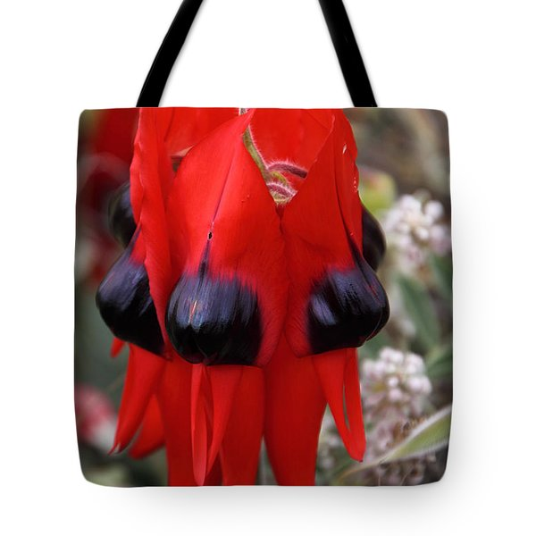 Sturt's Desert Pea Outback South Australia Tote Bag by Carole-Anne Fooks
