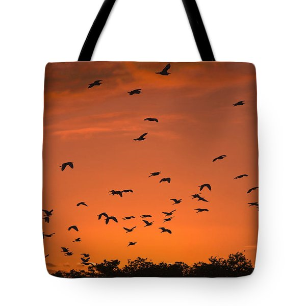 Birds At Sunset Tote Bag by Sally Weigand