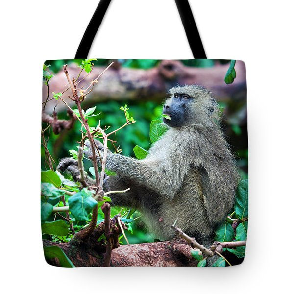 A Baboon In African Bush Tote Bag by Michal Bednarek