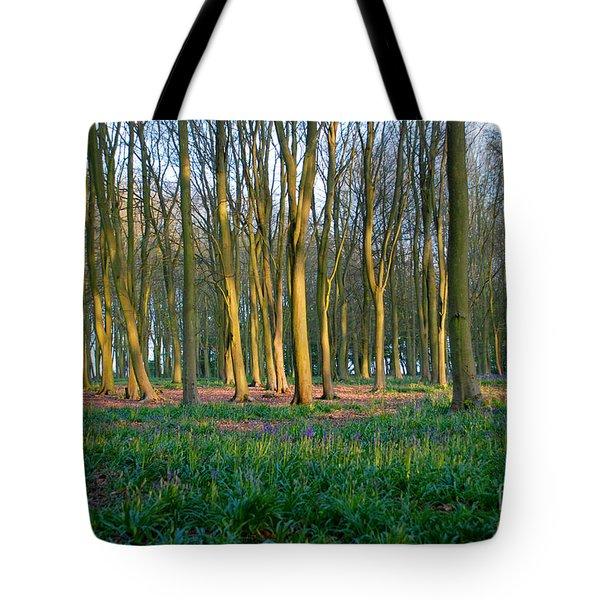 A Badbury Clump Evening Tote Bag