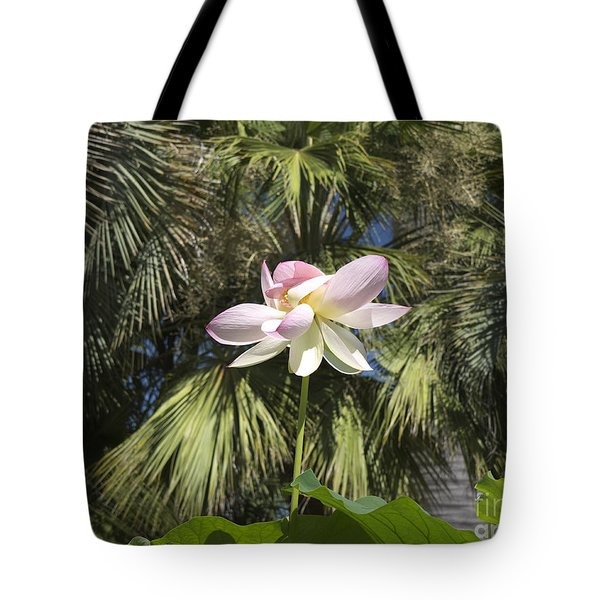 A Balmy Lotus Flower Tote Bag