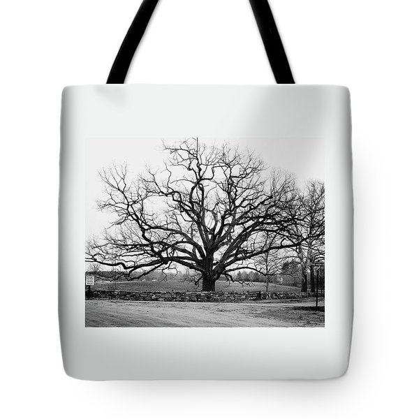 A Bare Oak Tree Tote Bag