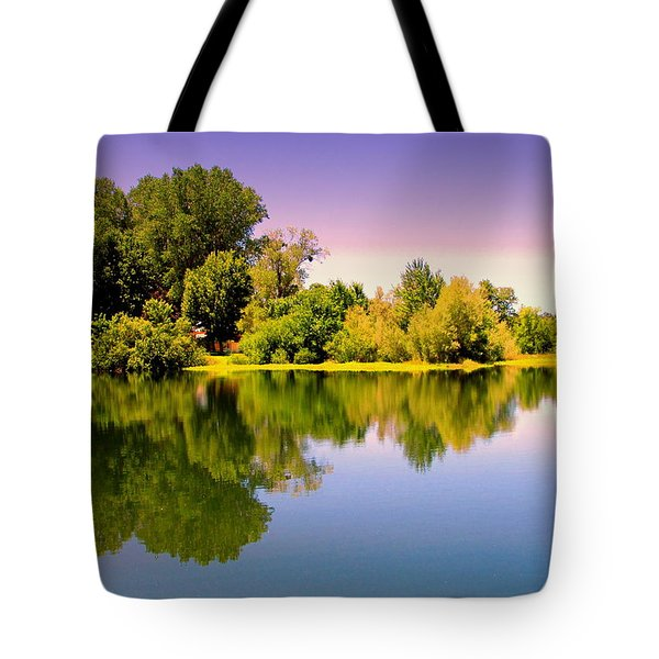 A Beautiful Day Reflected Tote Bag by Joyce Dickens