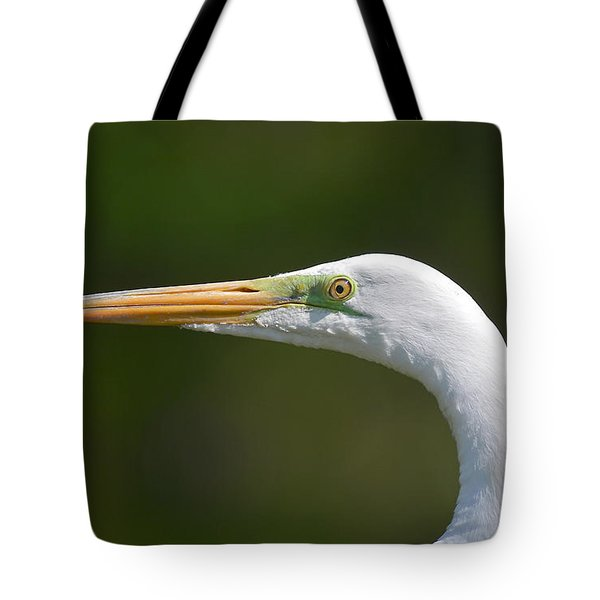 Tote Bag featuring the photograph A Beautiful Face by Kathy Baccari