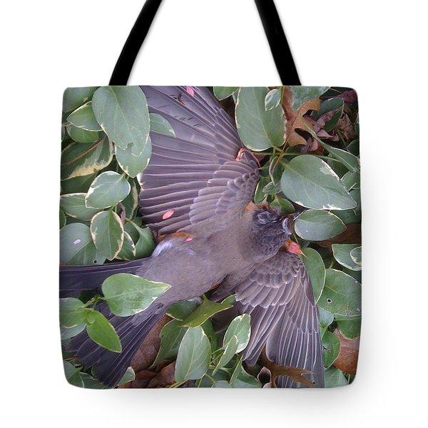 A Beautiful Spirit Tote Bag