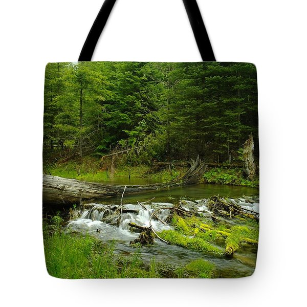 A Beaver Dam Overflowing Tote Bag