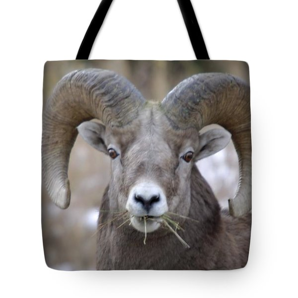 A Big Ram Caught With His Mouth Full Tote Bag by Jeff Swan
