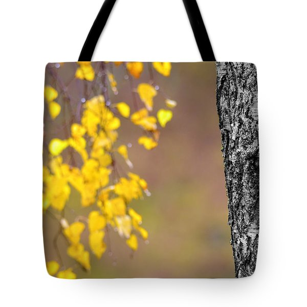 A Birch At The Lake Tote Bag by Tommytechno Sweden