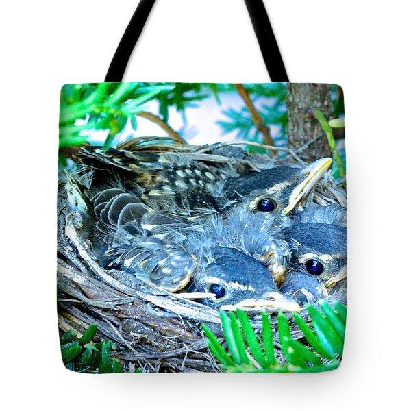 A Bird's Eye View Tote Bag by Rita Mueller