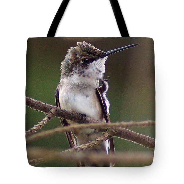 A Bit Of An Itch Tote Bag by Kim Pate