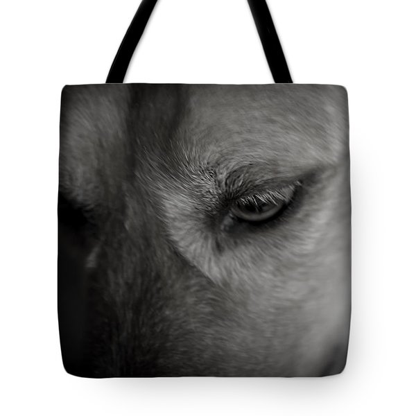 A Black And White Moment With My Dog Tote Bag