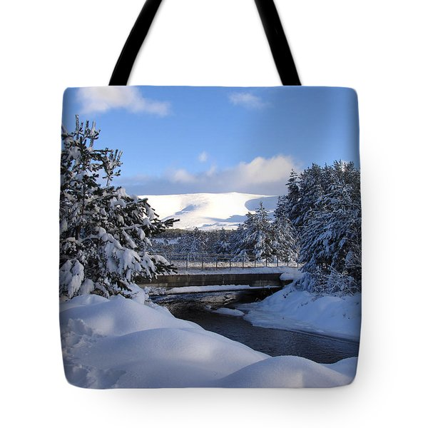 A Bridge In The Snow Tote Bag