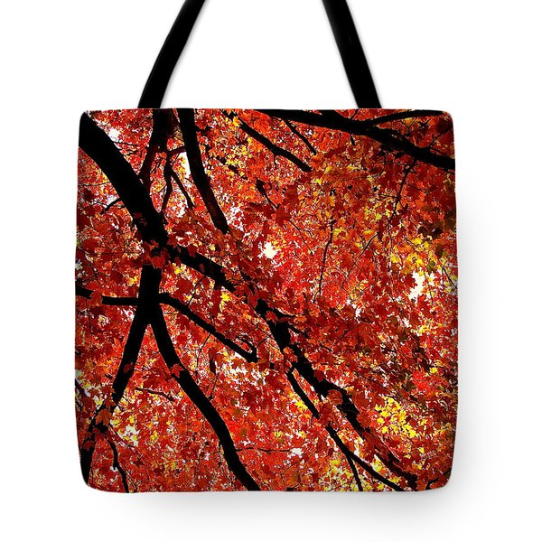 A Brilliant Autumn Tote Bag by Rita Mueller