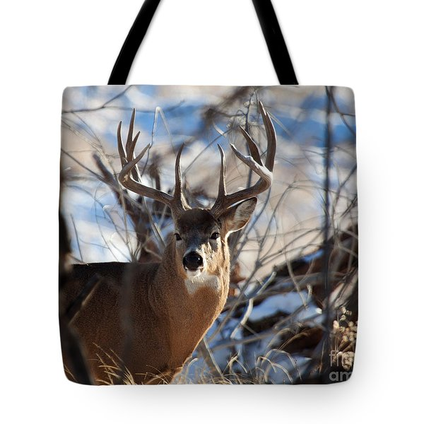 A Buck In The Bush Tote Bag
