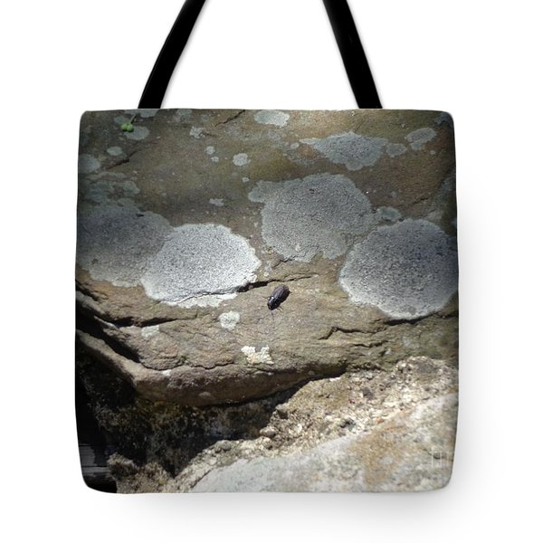 A Bug's World Tote Bag by Christina Verdgeline