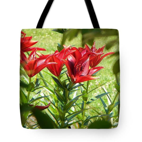 A Burst Of Red Tote Bag by Jean Goodwin Brooks