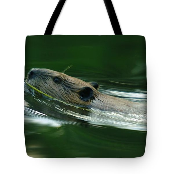 A Busy Beaver  Tote Bag by Jeff Swan