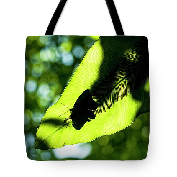 A Butterfly At The Butterfly Park Tote Bag